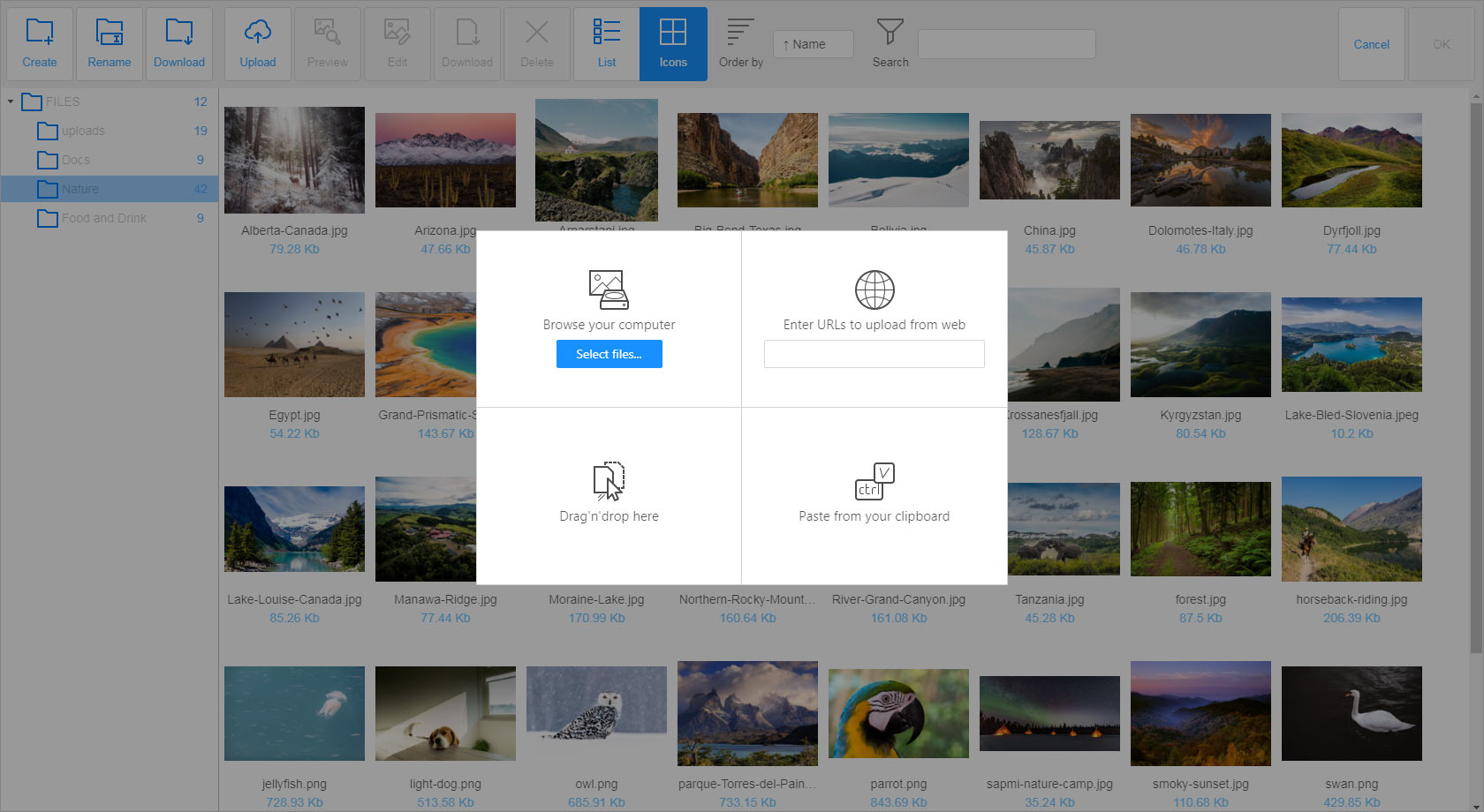 File Manager for your website - N1ED